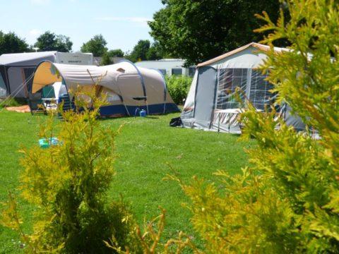 toerplaats camping wisentbos