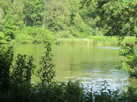 IJsselhof